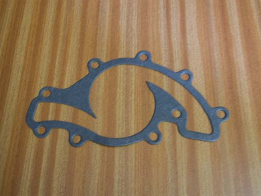 water pumpp gasket (serpentine)